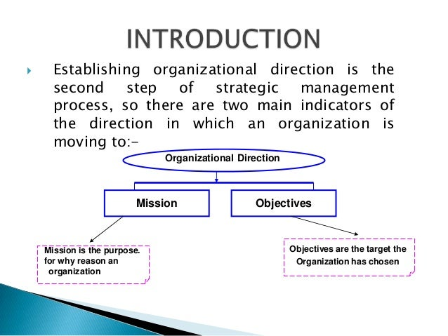 Establishing organizational direction