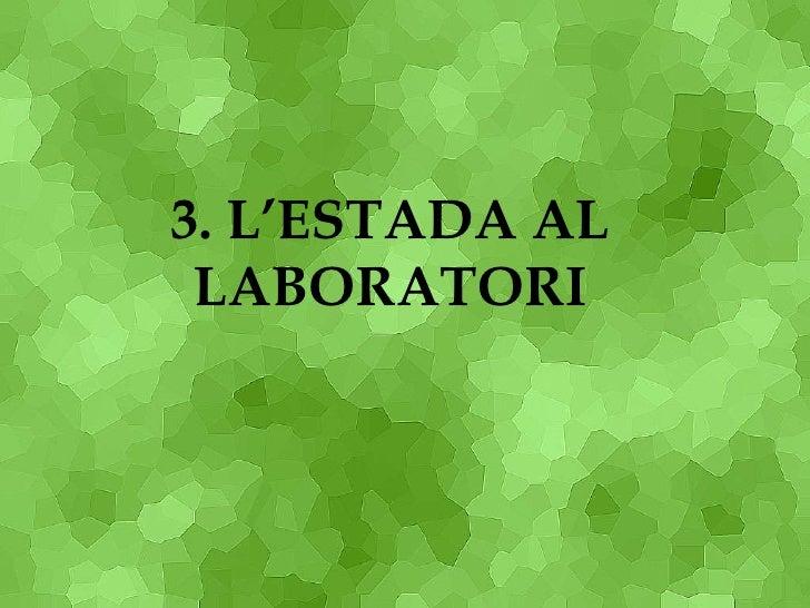 3. L'ESTADA AL LABORATORI