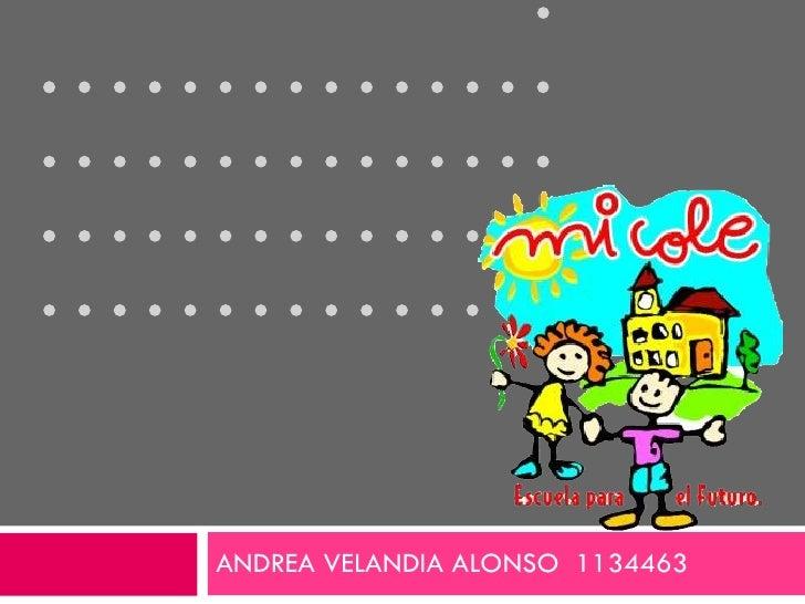  ANDREA VELANDIA ALONSO  1134463