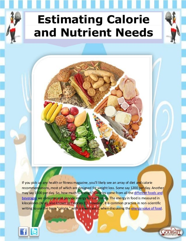 Estimating calorie and nutrient needs