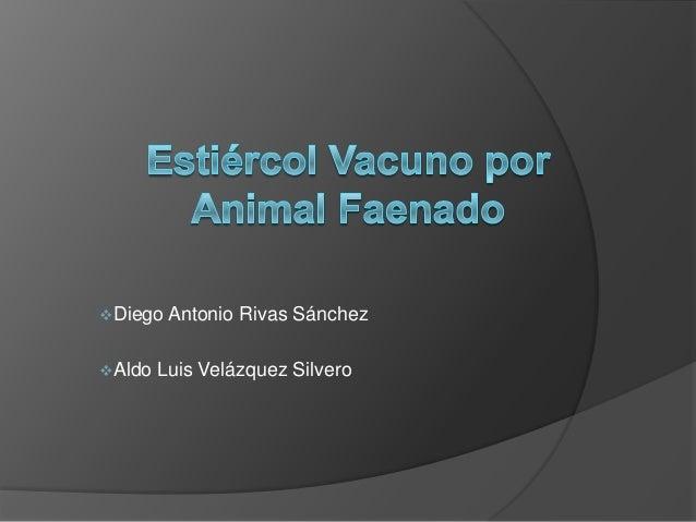 Diego Antonio Rivas SánchezAldo Luis Velázquez Silvero