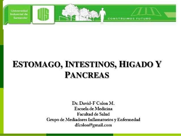 ESTOMAGO, INTESTINOS, HIGADO Y          PANCREAS