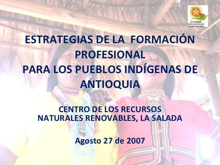 Estrategias  De La Formacion Profesional Para Pueblos Indigenas