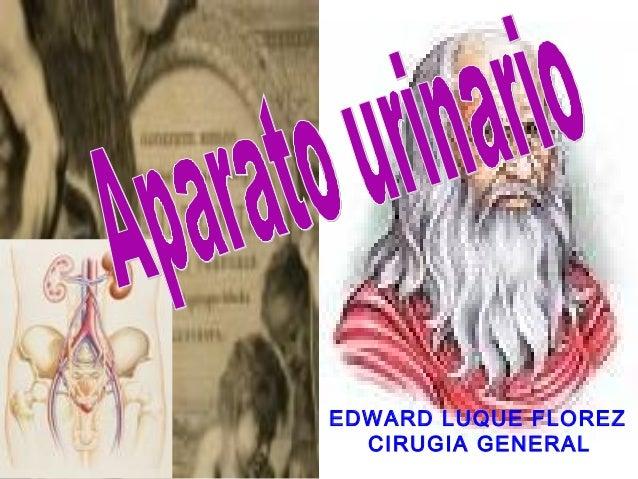 EDWARD LUQUE FLOREZ CIRUGIA GENERAL