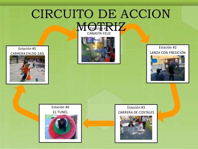 Circuito Motriz : Estrategias de educacion fisica