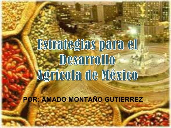 POR: AMADO MONTAÑO GUTIERREZ
