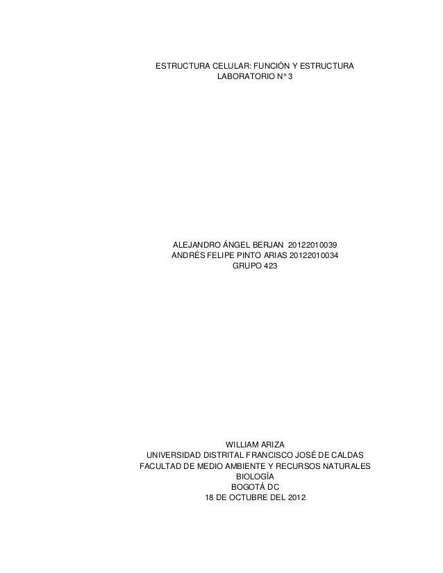ESTRUCTURA CELULAR: FUNCIÓN Y ESTRUCTURA LABORATORIO N° 3 ALEJANDRO ÁNGEL BERJAN 20122010039 ANDRÉS FELIPE PINTO ARIAS 201...