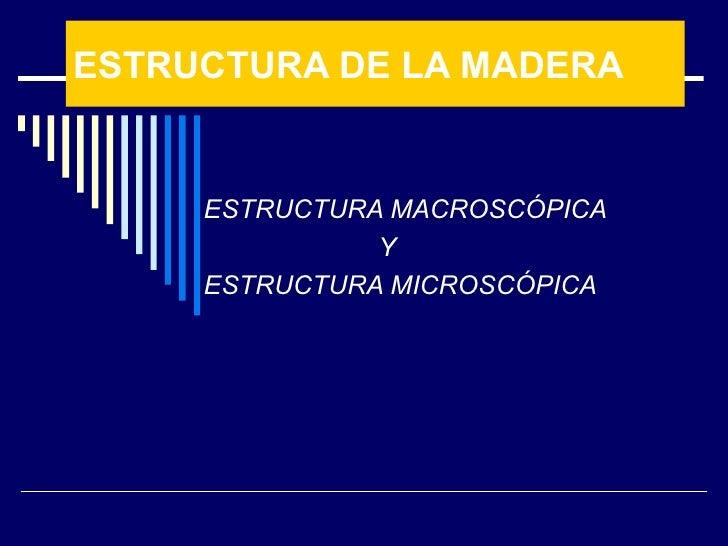ESTRUCTURA DE LA MADERA ESTRUCTURA MACROSCÓPICA Y ESTRUCTURA MICROSCÓPICA