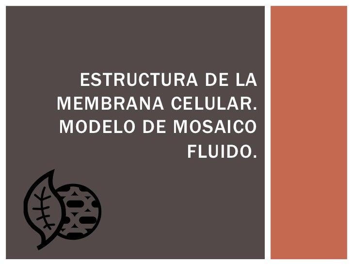 ESTRUCTURA DE LAMEMBRANA CELULAR.MODELO DE MOSAICO           FLUIDO.