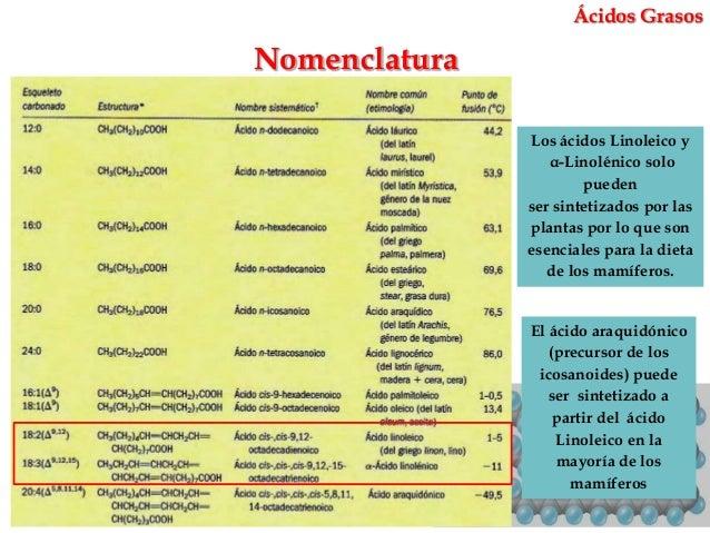 Los Acidos Grasos ácidos Grasos Nomenclatura Los