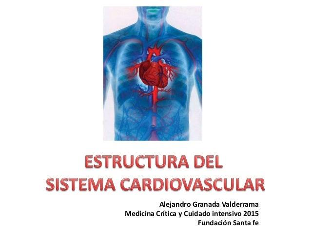 Alejandro Granada Valderrama Medicina Crítica y Cuidado intensivo 2015 Fundación Santa fe