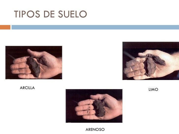 Ciencias naturales estructura del suelo - Tipos de suelo casa ...