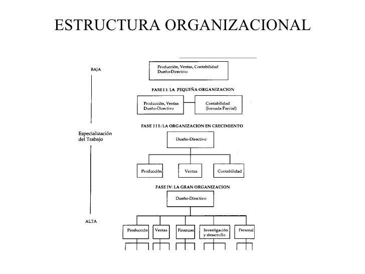Estructura Organizacional(3)