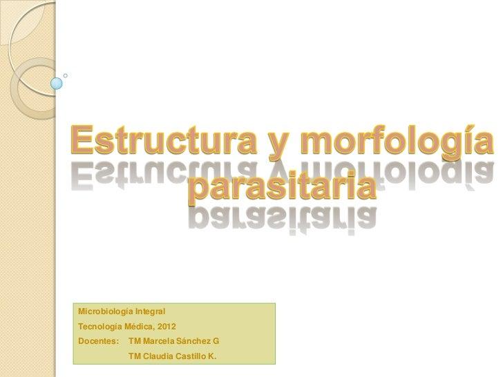 Estructura y morfología  parasitaria integral 2012