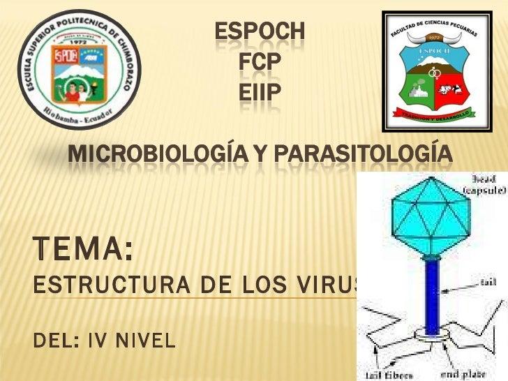 TEMA:  ESTRUCTURA DE LOS VIRUS DEL: IV NIVEL
