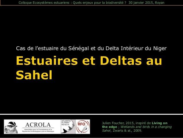 Cas de l'estuaire du Sénégal et du Delta Intérieur du Niger Julien Foucher, 2015, inspiré de Living on the edge ; Wetlands...