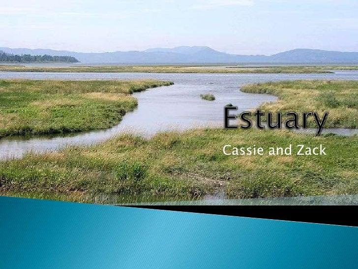 Estuary<br />Cassie and Zack<br />