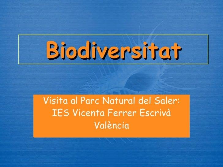 Biodiversitat Visita al Parc Natural del Saler: IES Vicenta Ferrer Escriv à València
