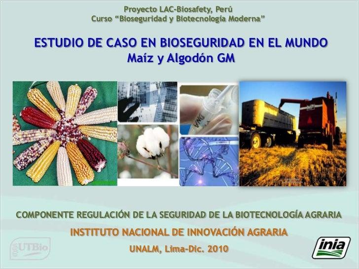 """Proyecto LAC-Biosafety, Perú<br />Curso """"Bioseguridad y Biotecnología Moderna""""<br />ESTUDIO DE CASO EN BIOSEGURIDAD EN EL ..."""