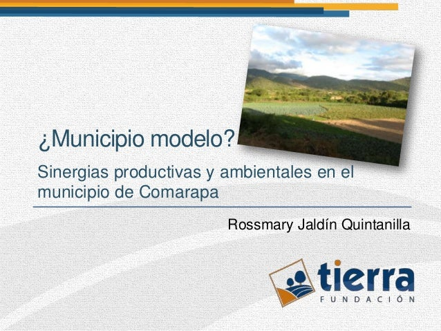 ¿Municipio modelo?Sinergias productivas y ambientales en elmunicipio de Comarapa                        Rossmary Jaldín Qu...