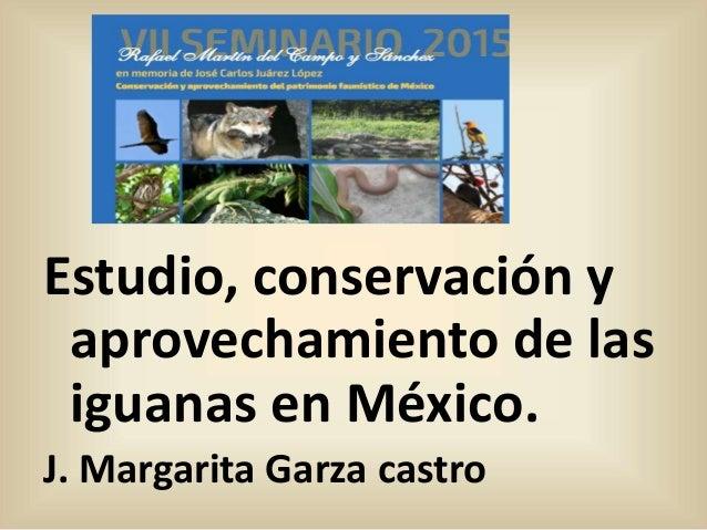 Estudio, conservación y aprovechamiento de las iguanas en México. J. Margarita Garza castro