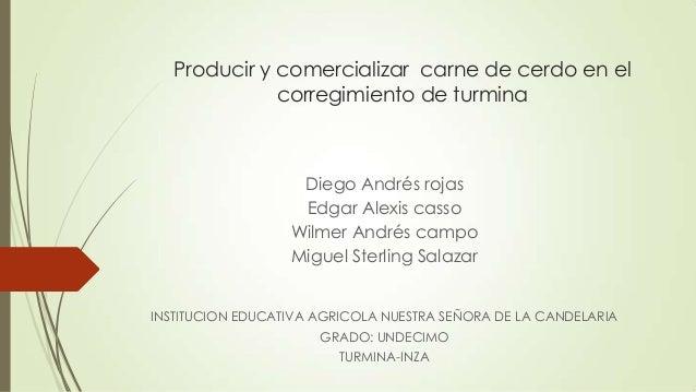 Producir y comercializar carne de cerdo en el corregimiento de turmina  Diego Andrés rojas Edgar Alexis casso Wilmer André...