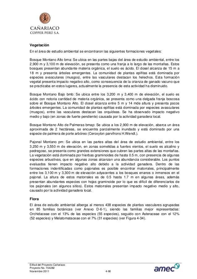 VegetaciónEn el área de estudio ambiental se encontraron las siguientes formaciones vegetales:Bosque Montano Alto bma: Se ...
