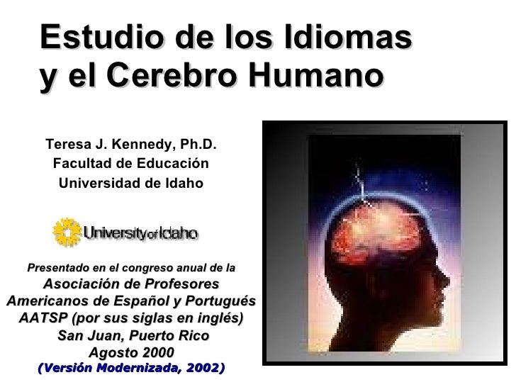 Estudio de los idiomas y el cerebro humano for Bedroom y sus partes en ingles