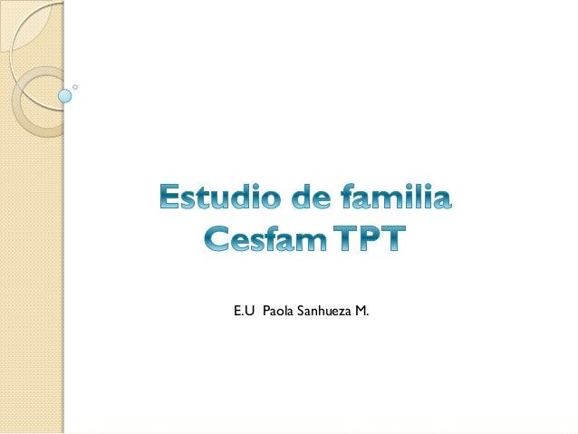 E.U Paola Sanhueza M.