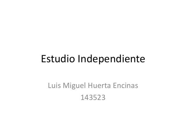 Estudio Independiente Luis Miguel Huerta Encinas 143523