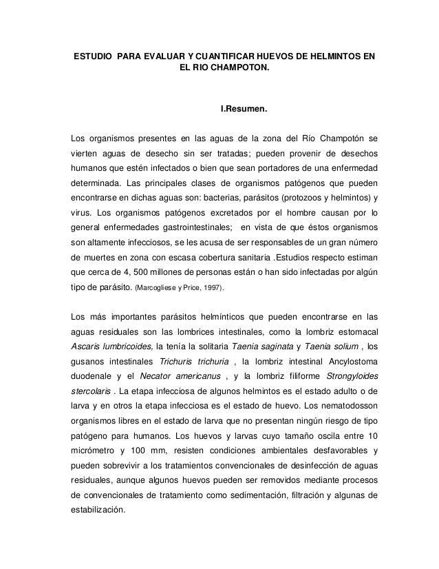ESTUDIO PARA EVALUAR Y CUANTIFICAR HUEVOS DE HELMINTOS EN                   EL RIO CHAMPOTON.                             ...