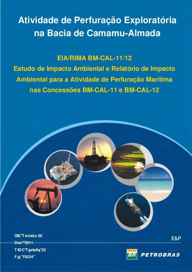 Estudo de impacto ambiental e relatório de impacto ambiental para a atividade de perfuração marítima nas concessões bm cal-11 e bm-cal-12