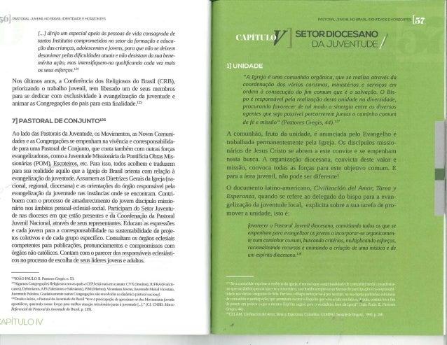 Estudos da CNBB 103 - Pastoral Juvenil no Brasil (Setor Diocesano da Juventude)