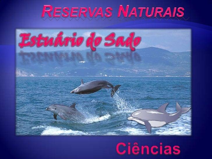 ReservasNaturais<br />Estuário do Sado<br />Ciências Naturais<br />