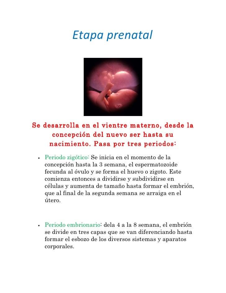 Etapa prenatalSe desarrolla en el vientre materno, desde la      concepción del nuevo ser hasta su     nacimiento. Pasa po...