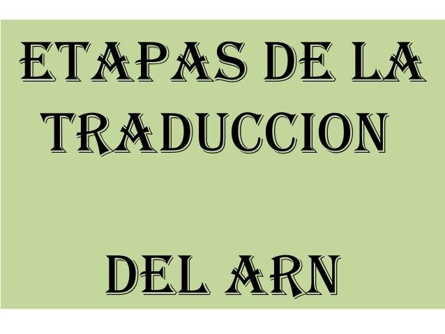 ETAPAS DE LA  TRADUCCION  DEL ARN
