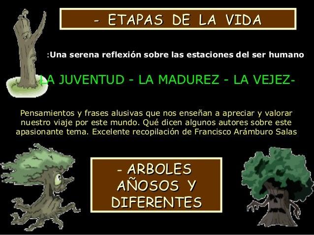 - ETAPAS DE LA VIDA- ETAPAS DE LA VIDA -LA JUVENTUD - LA MADUREZ - LA VEJEZ Pensamientos y frases alusivas que nos enseñan...