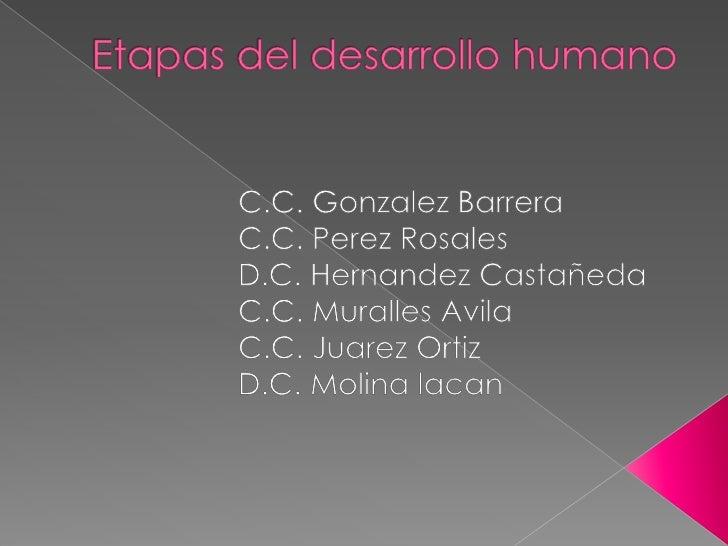 Etapas del desarrollo humano<br />C.C.Gonzalez Barrera<br />C.C. Perez Rosales<br />D.C. Hernandez Castañeda<br />C...
