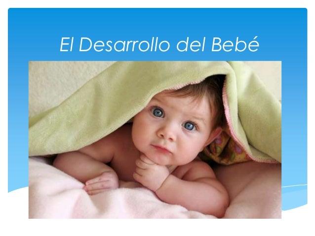 El Desarrollo del Bebé