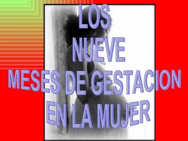 LOS NUEVE  MESES DE GESTACION EN LA MUJER