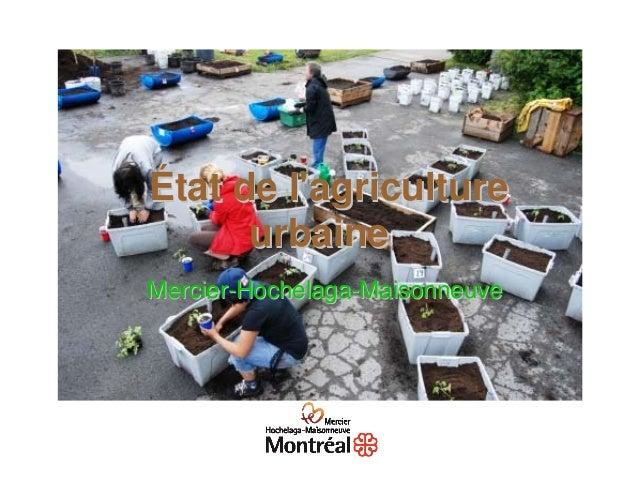 État de lagriculture      urbaineMercier-Hochelaga-Maisonneuve