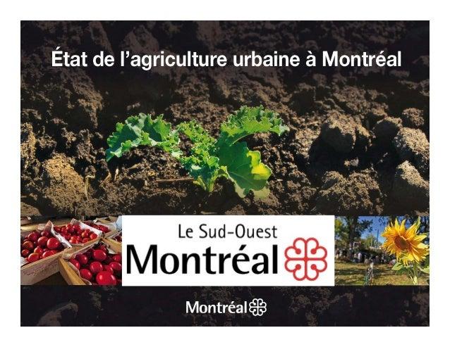 Etat agriculture urbaine arrondissement sud ouest