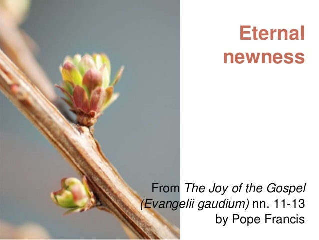Eternal newness  From The Joy of the Gospel (Evangelii gaudium) nn. 11-13 by Pope Francis