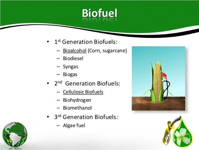 design of biofuel test rig essay Greener biofuels research conducted a blend of biofuel and conventional kerosene will share fuels and lubricants using a cfm56 engine fitted on special test.