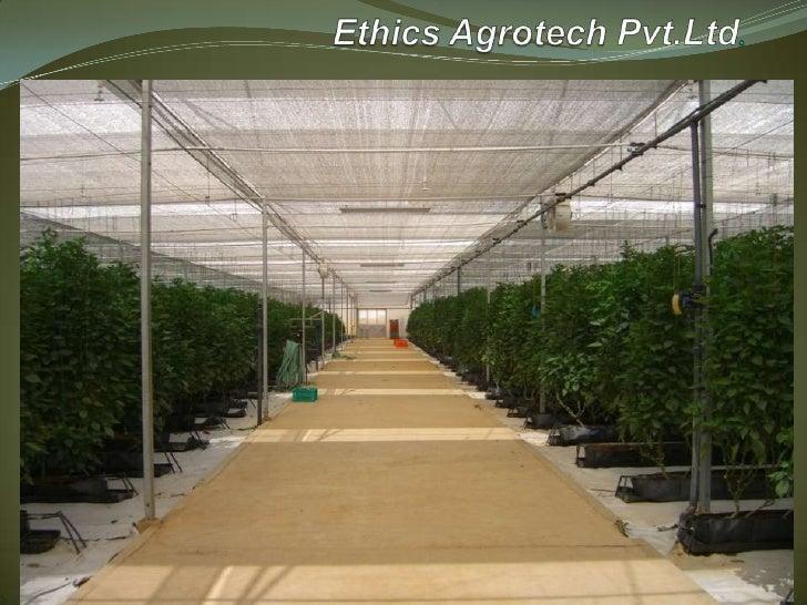 Ethics Agrotech Pvt.Ltd.<br />