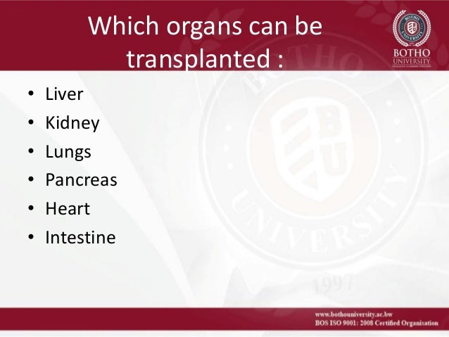 the ethics of cadaveric organs for An organ donor can be of mainly two types, living or deceased (cadaveric)  cadaveric donors are those that have been declared to be brain dead by a  specialist.