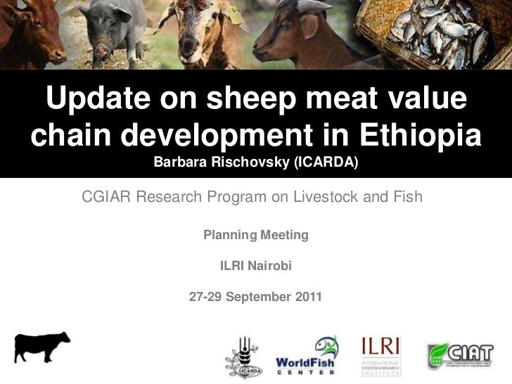 Update on sheep meat valuechain development in Ethiopia            Barbara Rischovsky (ICARDA)   CGIAR Research Program on...