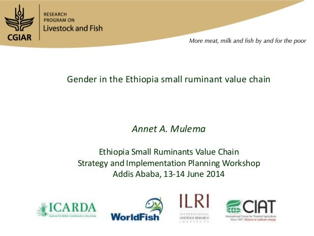 Gender in the Ethiopia small ruminant value chain Annet A. Mulema Ethiopia Small Ruminants Value Chain Strategy and Implem...