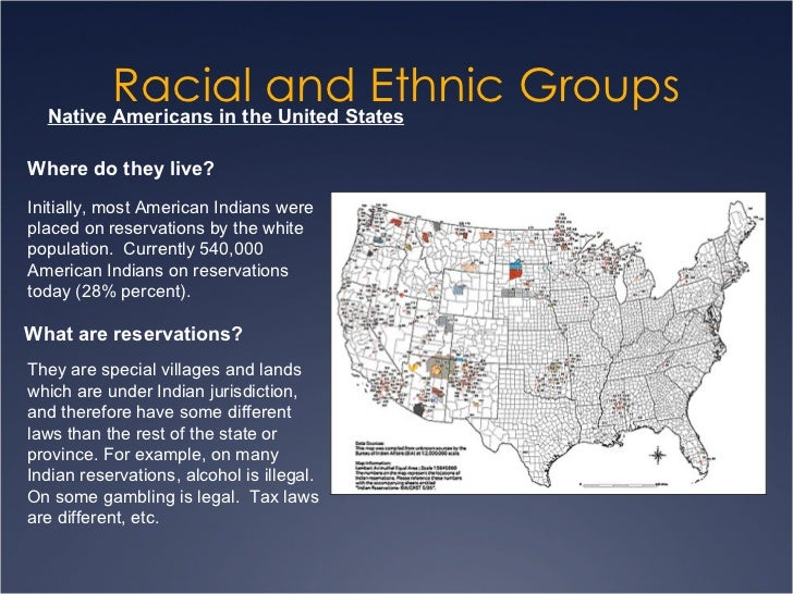 Racial and Ethnic Groups by Richard T. Schaefer (2011, Hardcover, Revised)
