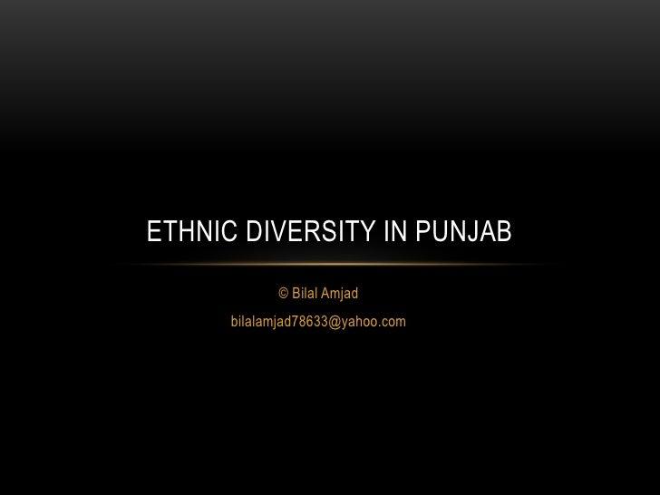 ETHNIC DIVERSITY IN PUNJAB            © Bilal Amjad      bilalamjad78633@yahoo.com